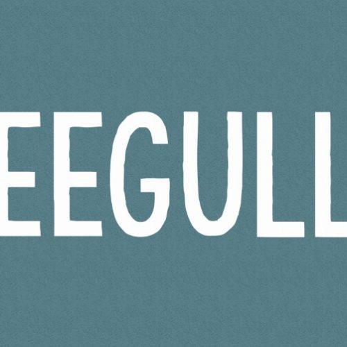 Seegulls